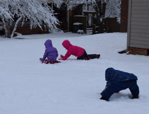 Each one better start their own snowman!