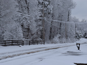 2015-02-26 snow day 2 028
