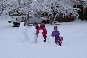 Enough snow for 5 complete snowmen.. A snow family!